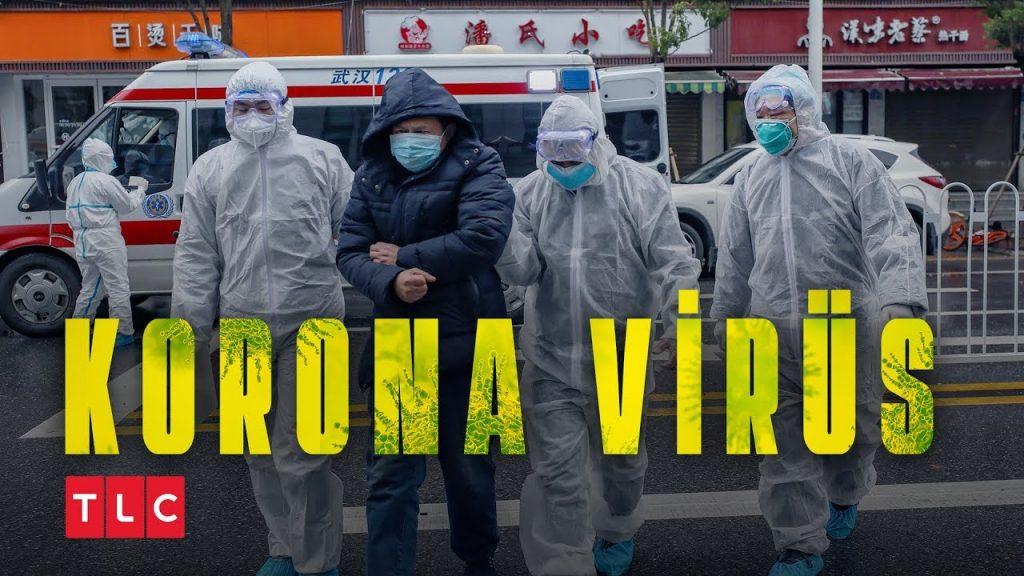 tlc koronavirüs gerçeği