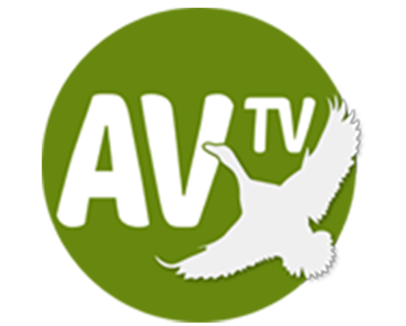 AV TV 8